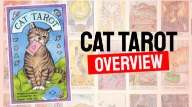 Cat Tarot Deck REVIEW - All Cards List Review!