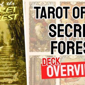 Tarot of the Secret Forest Deck REVIEW - All Tarot Cards List