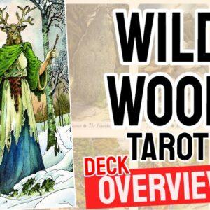 Wildwood Tarot Deck Overview - All Tarot Cards List